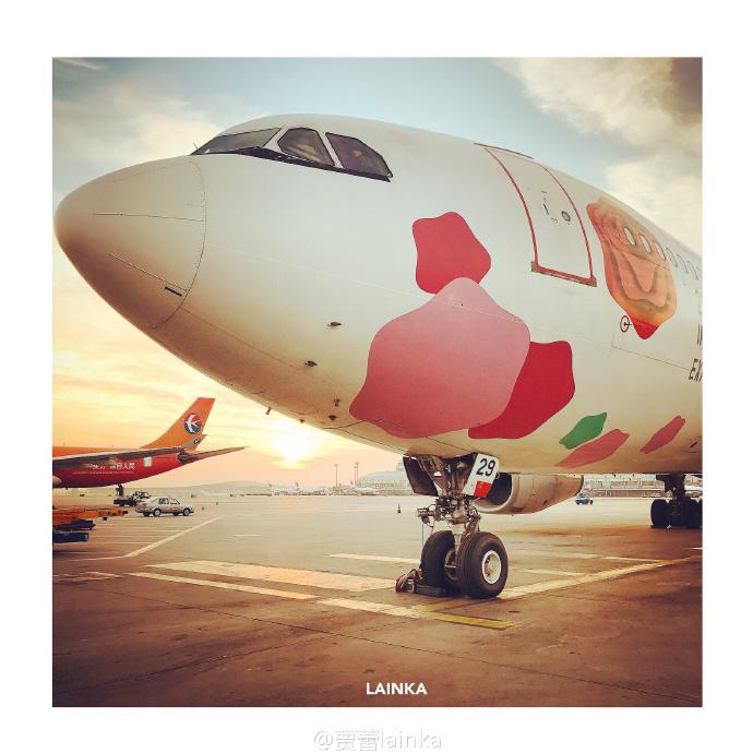 萌萌的飞机
