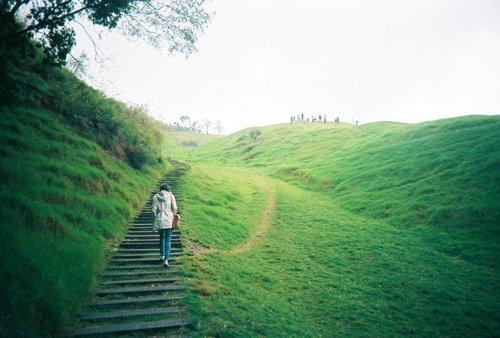 小清新图片:绿色静谧时光
