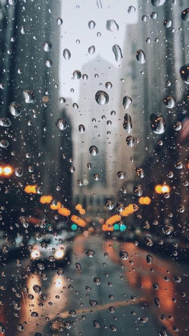 高清雨滴水珠手机壁纸