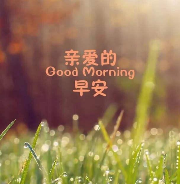 早安图片励志心语美图