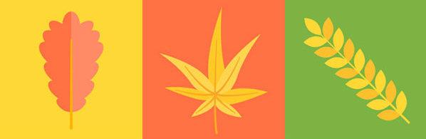 设计素材,彩色秋季叶子矢量素材
