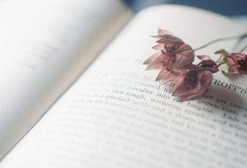 阅读书籍唯美文艺图片