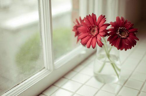 可爱温馨治愈小清新图片