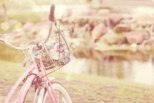 生活是阳光的 治愈系唯美可爱小清新小物图片