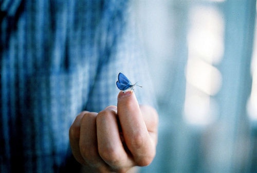 淡蓝色系列小清新图片