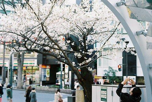 日本街头风景 唯美小清新图片