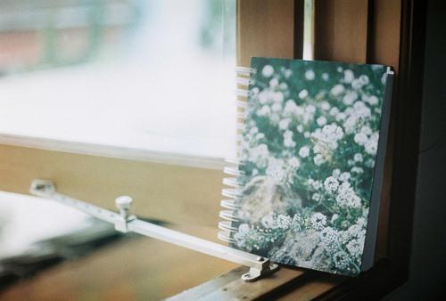 小清新笔记本系列 唯美图片