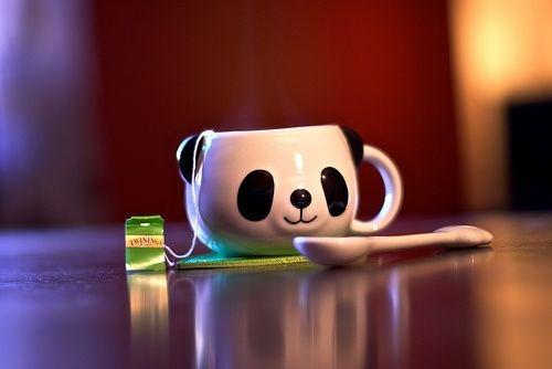 超可爱超萌的熊猫图片