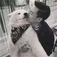 有爱好看的男生与宠物同框暖男头像