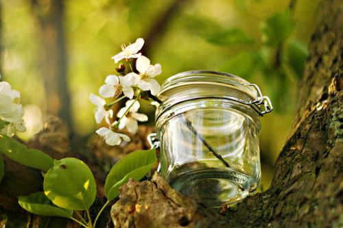许愿瓶唯美可爱图片