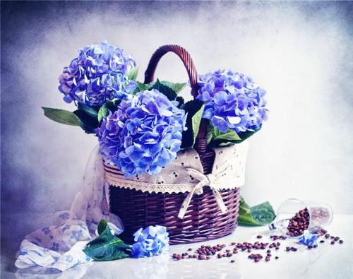 漂亮好看的插花花束唯美图片