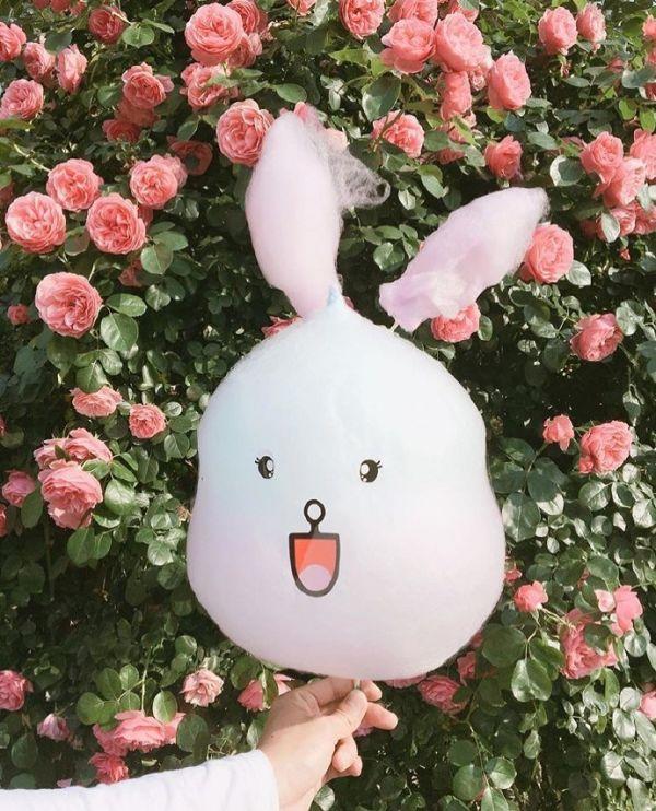 可爱的兔兔棉花糖