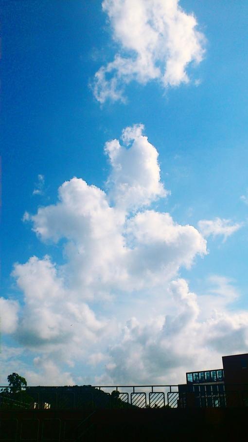 我填平了山海却发现你在云端
