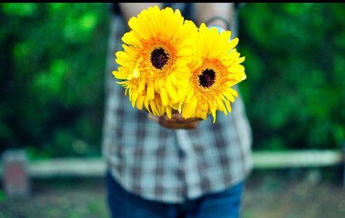 触及心灵的正能量长句 快乐源于对于生命的热爱