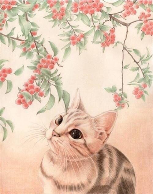 配图唯美早安说说:既然还在幸运的活着,当然要全力以赴的快乐
