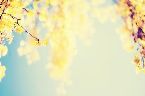 带点心灵鸡汤的早安心语优美的语句说说心情