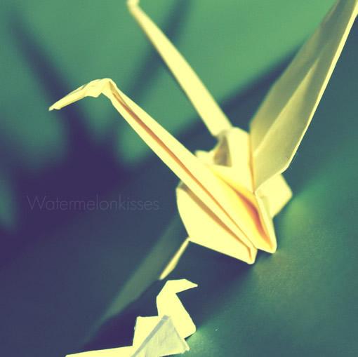 千纸鹤,承载记忆