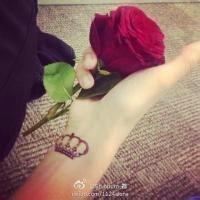手拿玫瑰欧美头像 qq女生手拿玫瑰头像