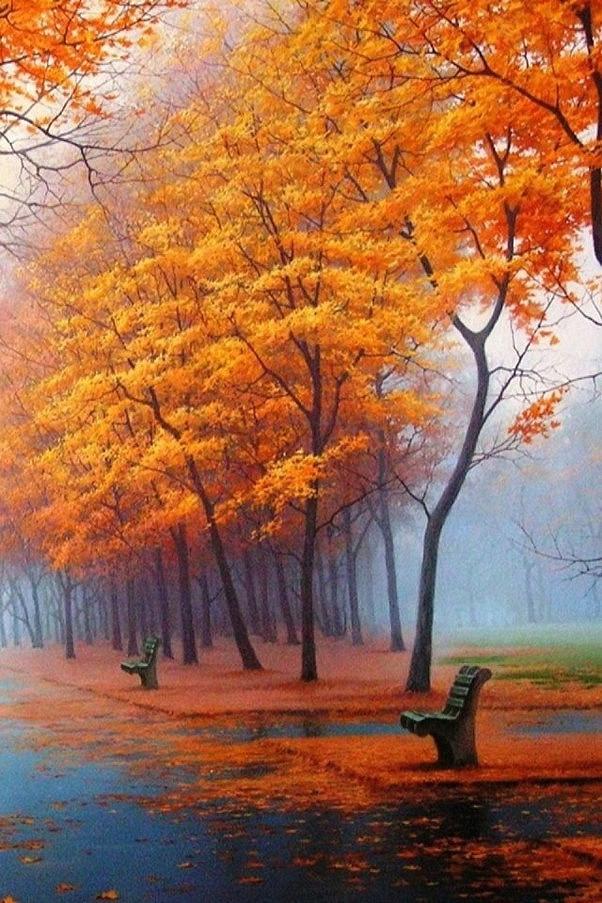 秋天的风景别样红 风景唯美图片