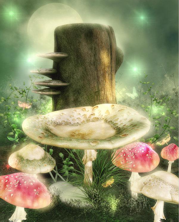 蘑菇里的童话世界 梦幻唯美图片