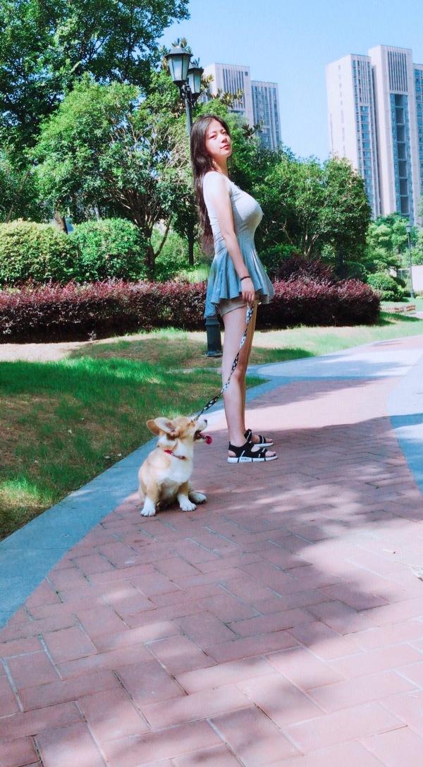 美女小区遛狗图片