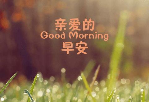 早安图片带励志的文字图片