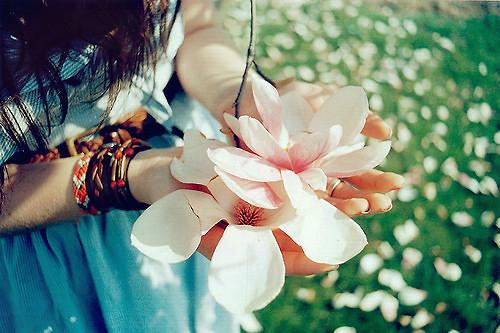 唯美花瓣小清新意境图片