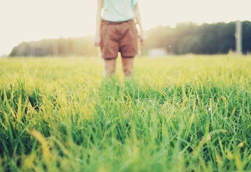 早安心语:生活,一半是回忆,一半是继续
