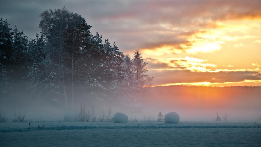 清晨阳光美丽风景图片电脑桌面壁纸下载第二辑