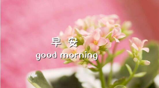 早上好图片带字句子 早上好正能量句子